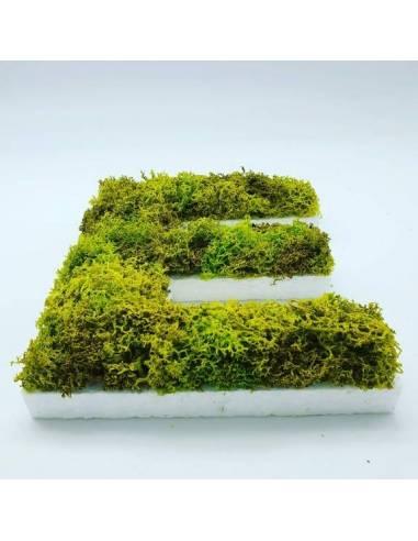 Personaliza tu logo, tu nombre o el de tu empresa en versión vegetal